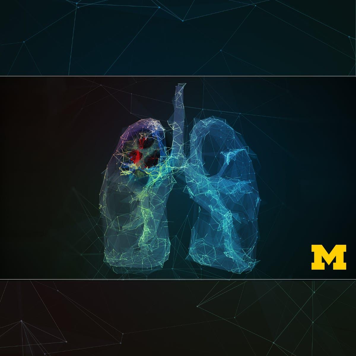 University of Michigan Online Courses | Coursera