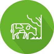 Sistemas agrosilvopastoriles: una alternativa climáticamente inteligente para la ganadería