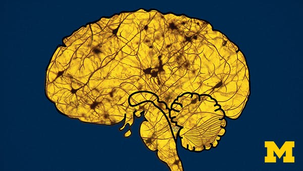 Sleep: Neurobiology, Medicine, and Society