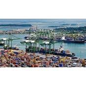 O Poder da Macroeconomia: princípios da economia no mundo real (em Português)