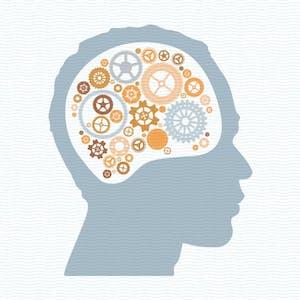 University of Michigan Online Courses Psychology of Popularity for University of Michigan Students in Ann Arbor, MI