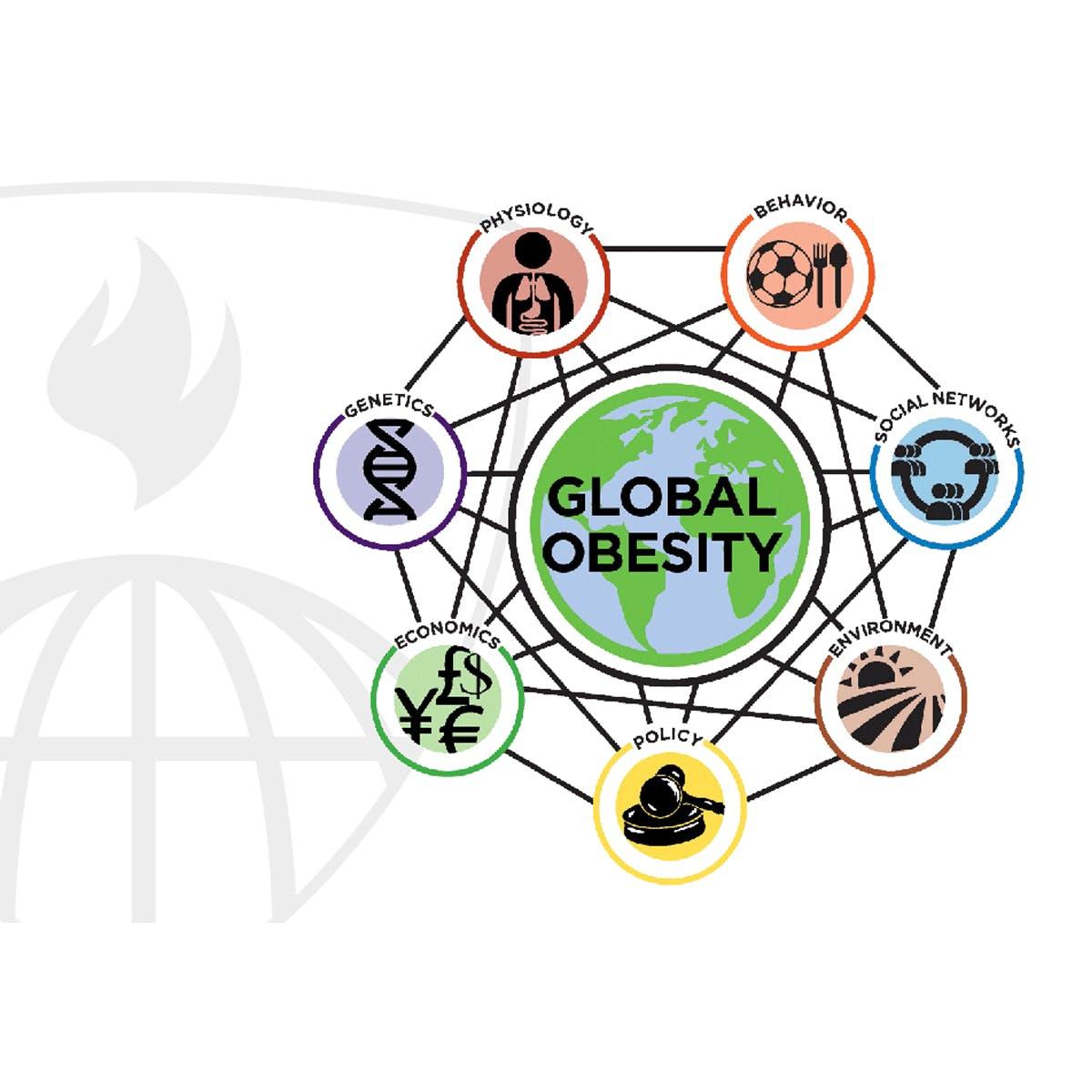 Ciência do Sistema e Obesidade
