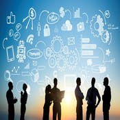 Leadership in Interprofessional Informatics