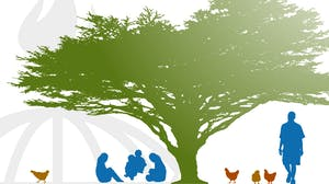 Diagnosing Health Behaviors for Global Health Programs