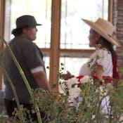 Curanderismo: Traditional Healing Using Plants
