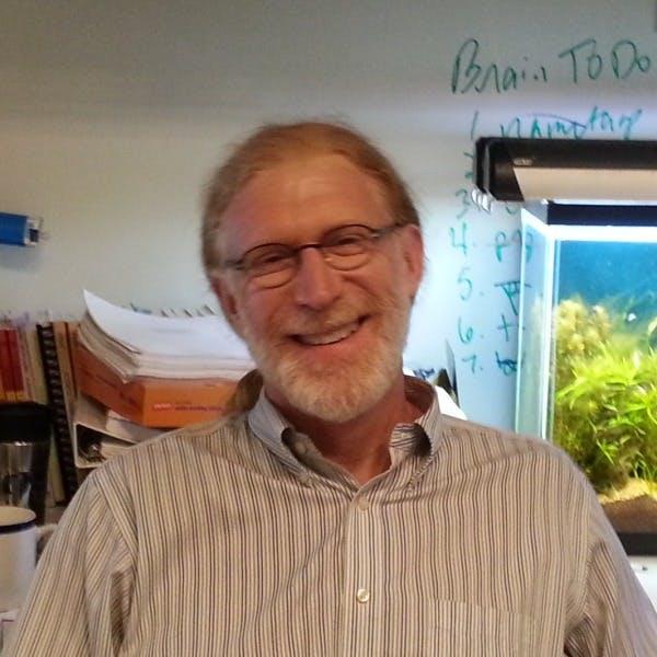 David Randle, Ph.D.