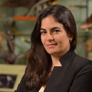 Ana Luz Porzecanski