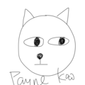 Payne Kao