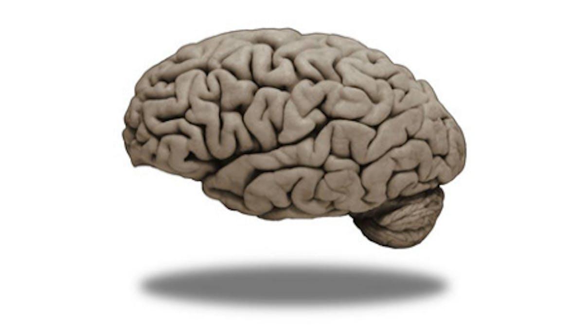 Medical Neuroscience   Coursera