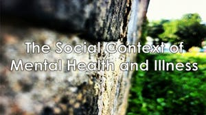 The Social Context of Mental Health and Illness