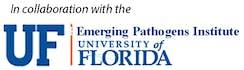 플로리다대학교