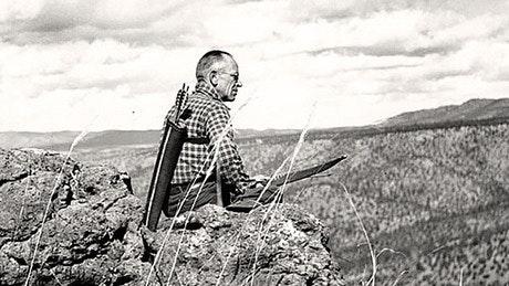 Aldo review land ethic