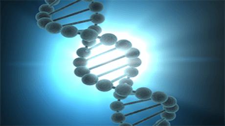 Experimental Genome Science