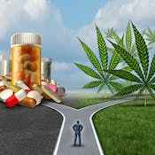 Medical Cannabis: The Health Effects of THC and CBD
