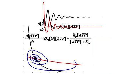 Dynamical Modeling Methods for Systems Biology
