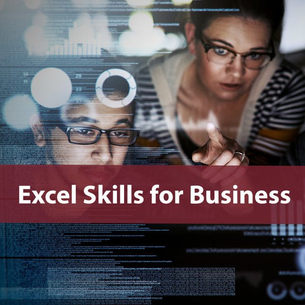 Excel Skills for Business