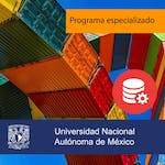 Database systems by Universidad Nacional Autónoma de México