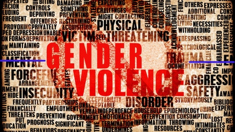 Confronting Gender Based Violence: Global Lessons with Case Studies from India