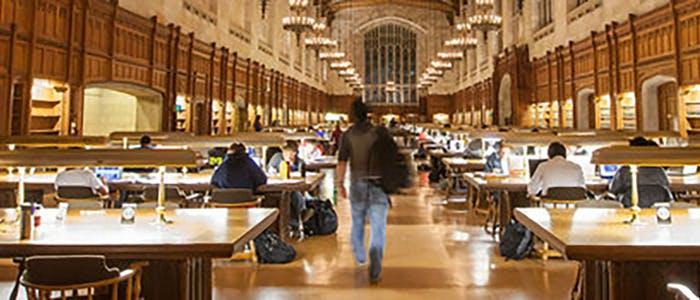 Мичиганский университет