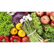 Fundamentals of Human Nutrition