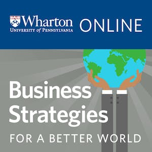 Business Strategies for A Better World