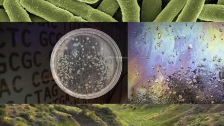 Engineering Life: Synbio, Bioethics & Public Policy