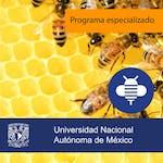 Fundamentos Estratégicos Empresariales by Universidad Nacional Autónoma de México