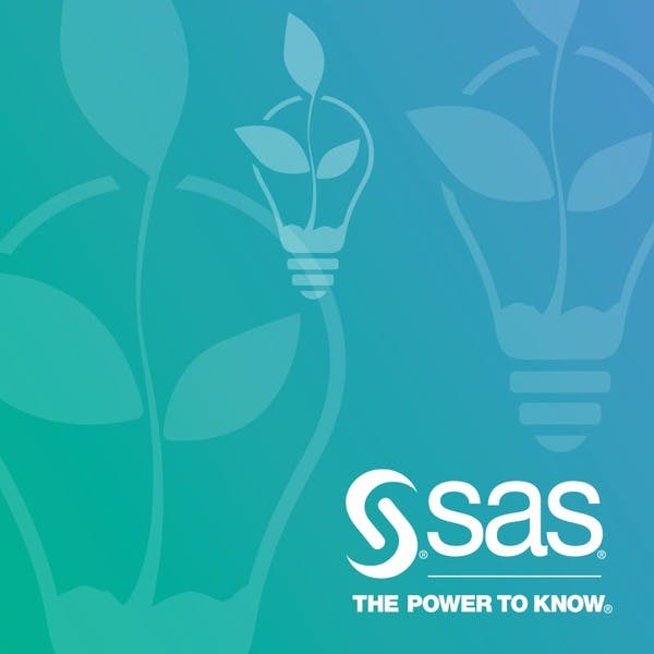 SAS® Programming