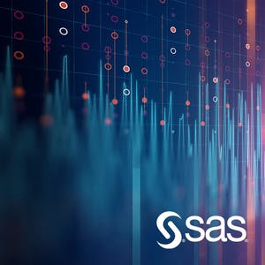 SAS Statistical Business Analyst