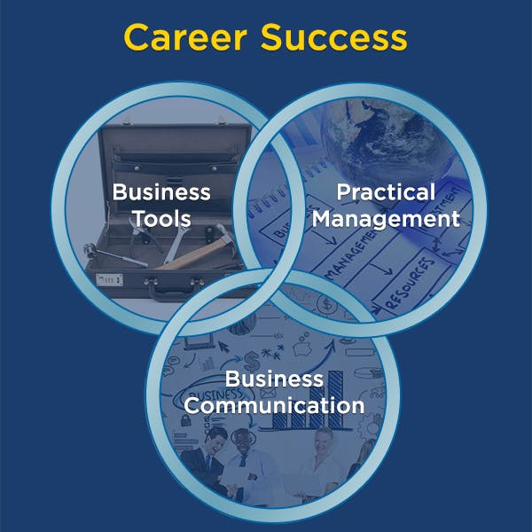 Career Success