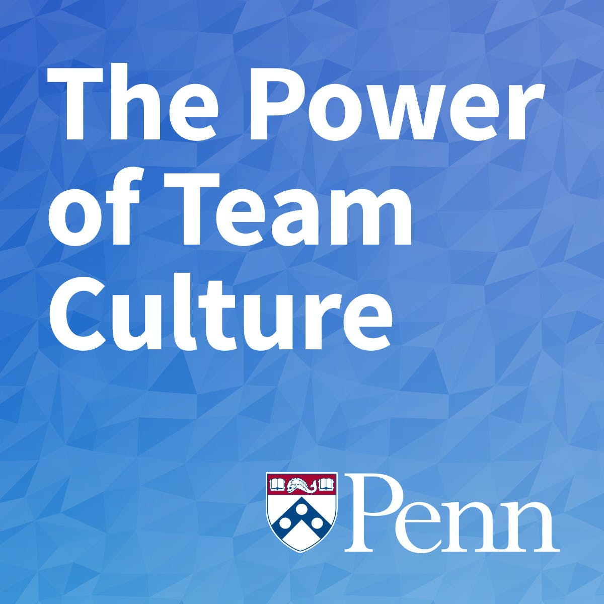 The Power of Team Culture