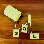 Intermediate Relational Database and SQL by Coursera Project Network