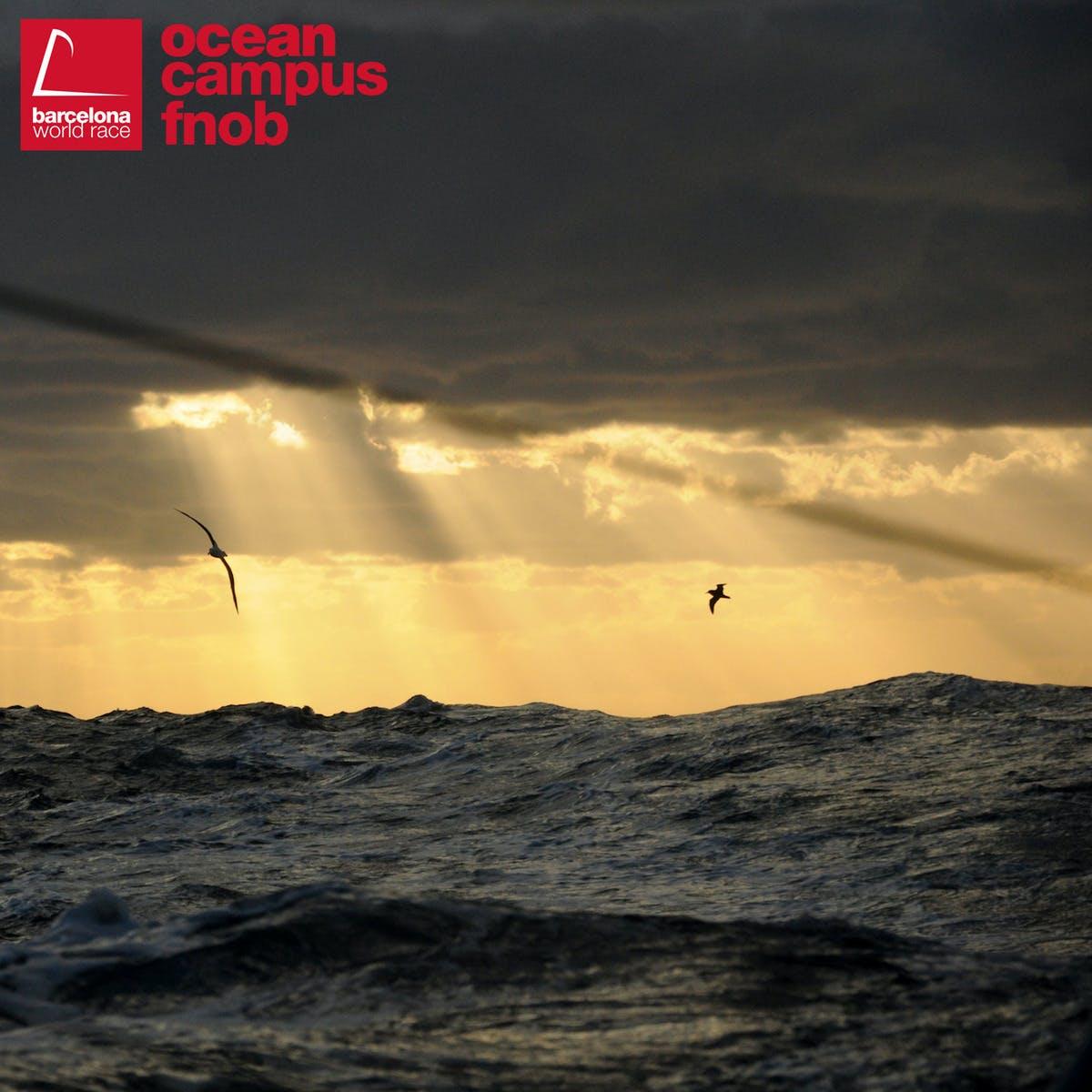 Oceanografía: una clave para entender mejor nuestro mundo