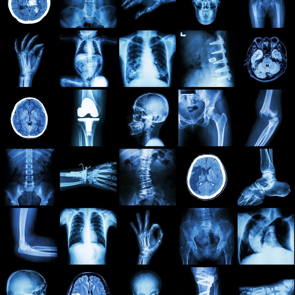 Общие вопросы патологии и патологической анатомии (General Issues of Pathology and Pathologic Anatomy)