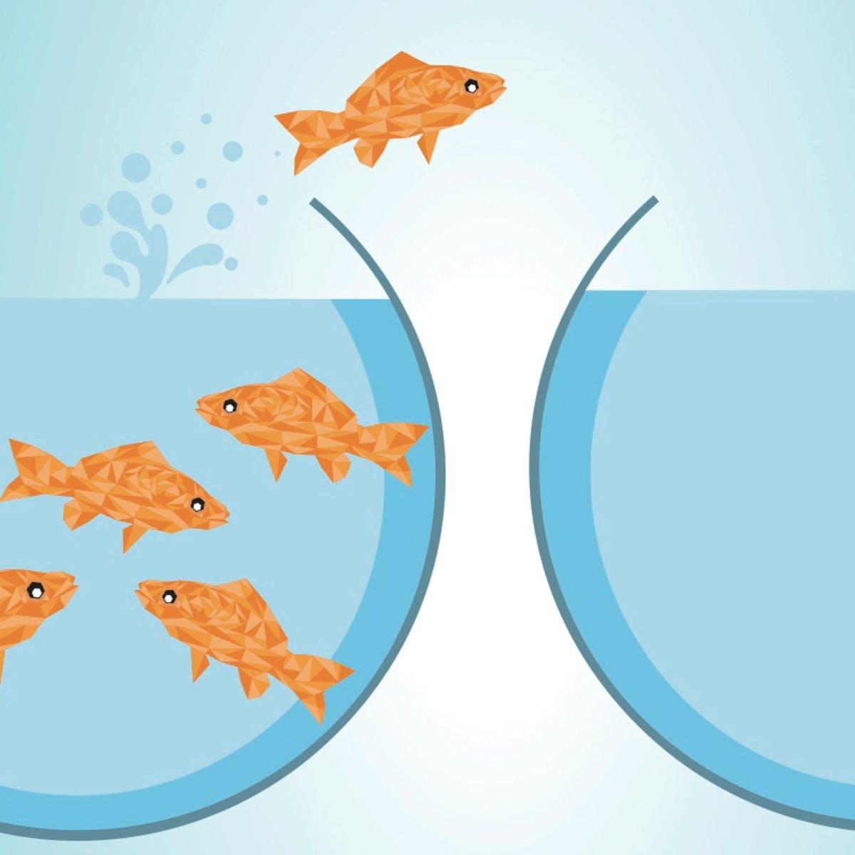Devenir entrepreneur du changement