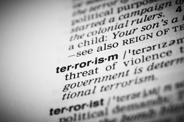 Terrorism and Counterterrorism: Comparing Theory and Practic Coupon
