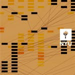Information Visualization: Foundations by New York University