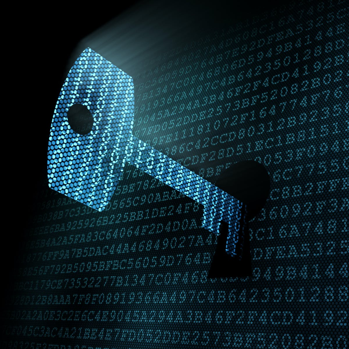 The Business of Cybersecurity Capstone