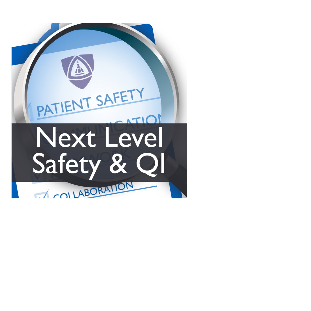 Taking Safety and Quality Improvement Work to the Next Level (Patient Safety VII)