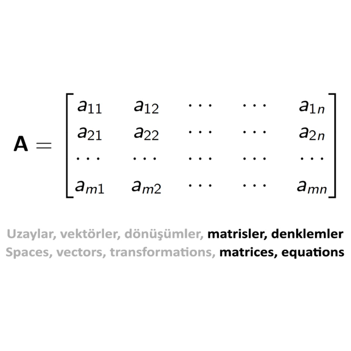Doğrusal Cebir II: Kare Matrisler, Hesaplama Yöntemleri ve Uygulamalar / Linear Algebra II: Square Matrices, Calculation Methods and Applications