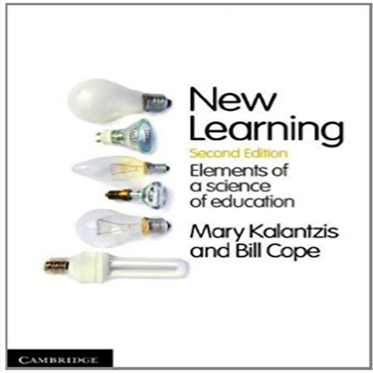 New Learning: Principles and Patterns of Pedagogy