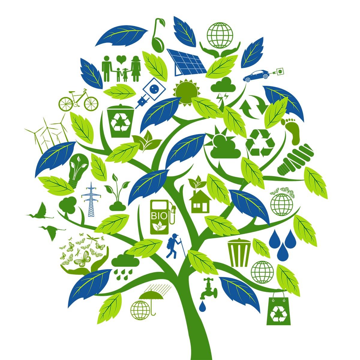 Comprendre l'écologie, pour une économie innovante
