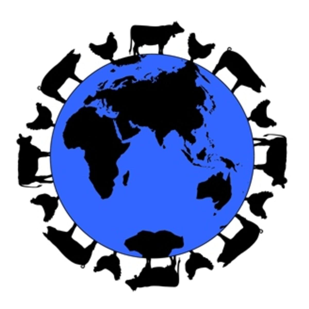 Feeding the World