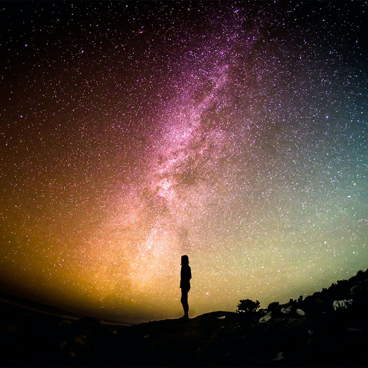 Astrobiology: Exploring Other Worlds