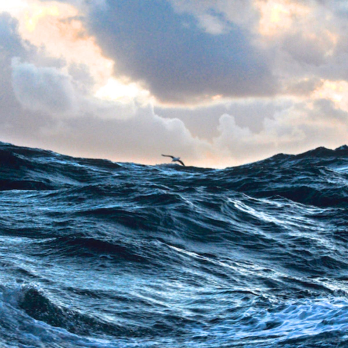 Oceanography: a key to better understand our world