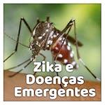 Compreendendo o Zika e doenças emergentes by Universidade de São Paulo