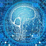 Exploratory Data Analysis for Machine Learning by IBM