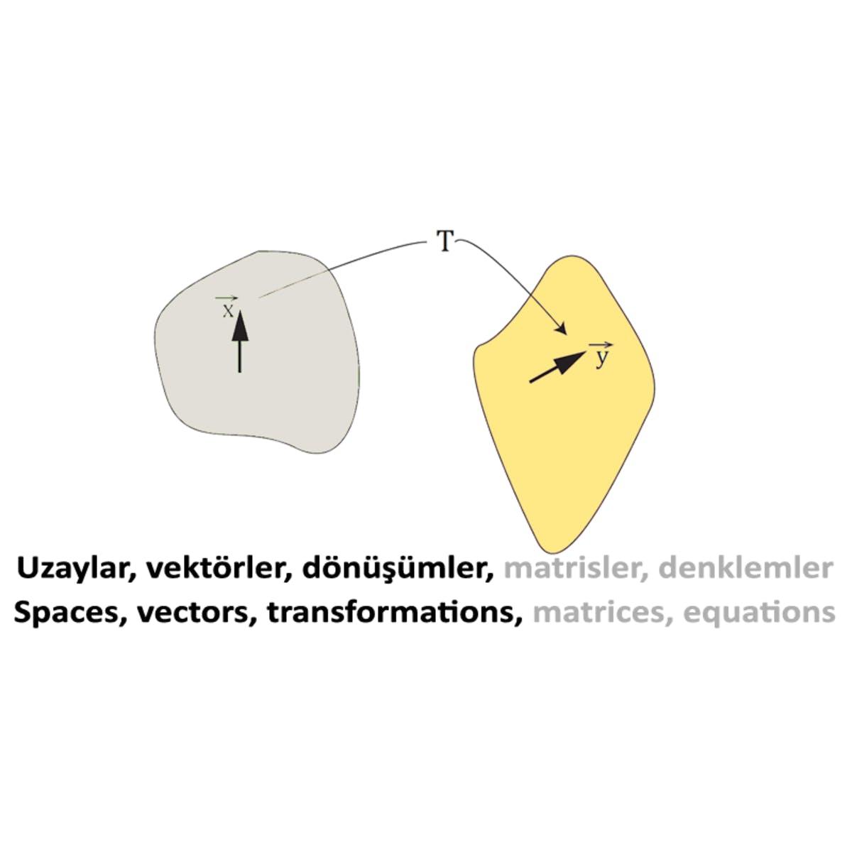 Doğrusal Cebir I: Uzaylar ve İşlemciler / Linear Algebra I: Spaces and Operators