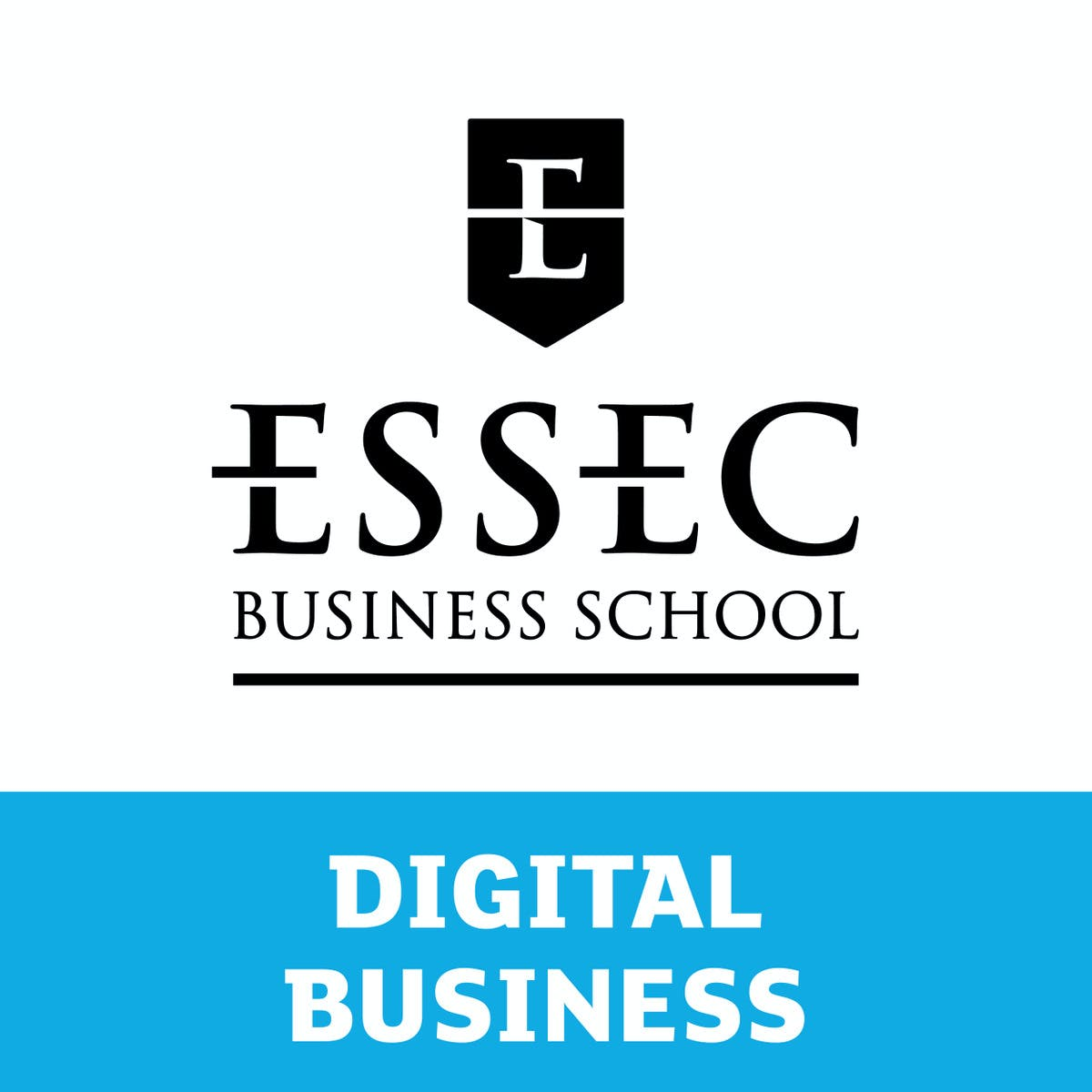 Case studies in business analytics with ACCENTURE