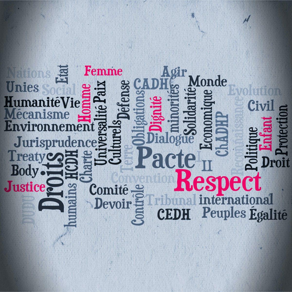 Introduction aux Droits de l'Homme